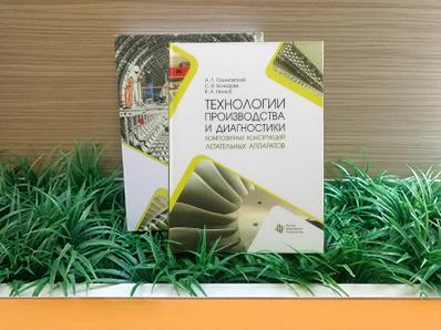 Вышло новое учебное пособие в соавторстве с Владимиром Нелюбом